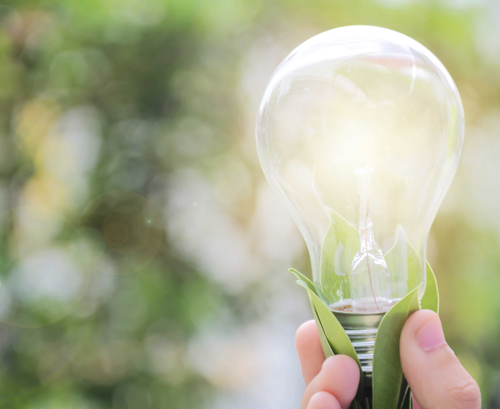 Nachhaltigkeit und Innovation